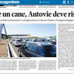 Cane in A4 gli danneggia l'auto: Il Risarcimento lo Paga Autovie